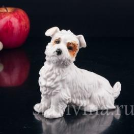 Статуэтка собаки из фарфора Собака, Karl Ens, Германия, 1920-30 гг.